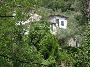 vakantiehuisje olivetta san michele